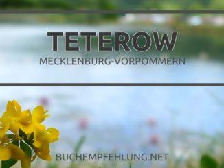 Teterow, Mecklenburg-Vorpommern - Buchempfehlung